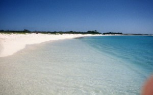 A Pristine beach on Los Roques