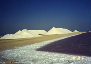 Salt flats on Bonaire